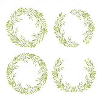 Watercolor hand painted green foliage wreath collection