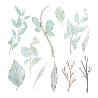 Акварель расписанные зеленые листья ветви, изолированные на белом