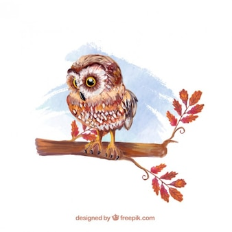 Watercolor hand painted owl illustration