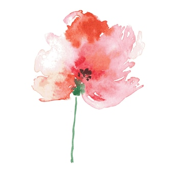 수채화 손으로 그린 빨간 양귀비 벡터 꽃 배경 수채화 빈티지 그림