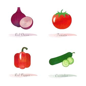 水彩健康有機植物野菜食品成分赤玉ねぎトマト赤唐辛子きゅうり