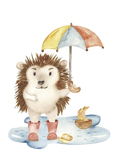 Watercolor hedgehog with umbrella in puddle
