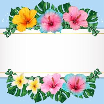 Акварельные цветы гибискуса и тропические листья элегантная рамка