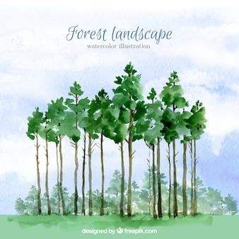 수채화 높은 나무 배경