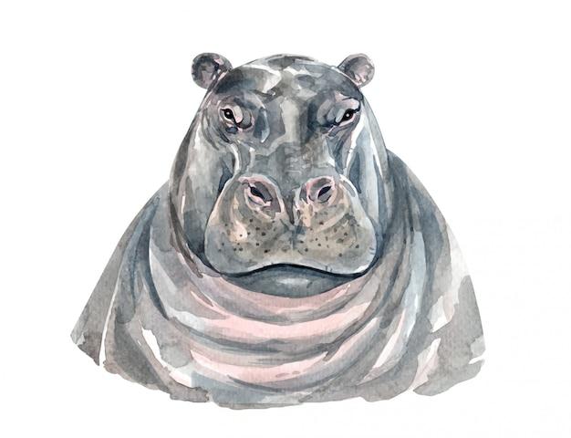 Watercolor hippopotamus portrait for printing.