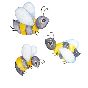 Watercolor honey bees, assorted wild insects, hand painted illustration isolated on white background. summer symbol for holiday, postcard, poster, banner and website.