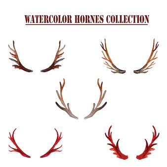 Watercolor horns collection
