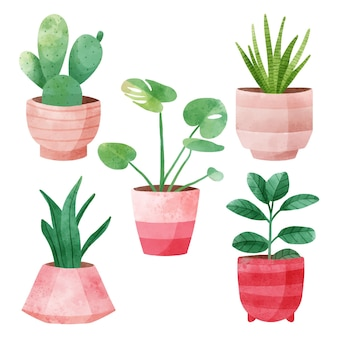 Watercolor houseplants collection in pots