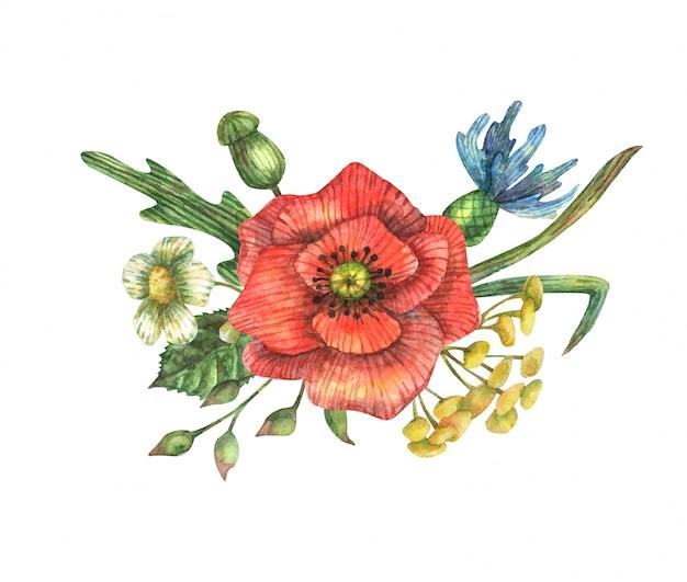 赤いケシ、青いヤグルマギク、カモミール、芽、葉、枝および他のフィールドハーブの花束の水彩イラスト。