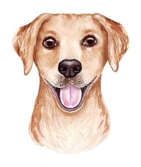 面白い犬の水彩イラスト。人気の犬種。犬のラブラドールレトリバー。白で隔離される手作りの文字