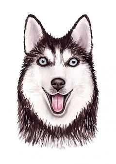 面白い犬の水彩イラスト。人気の犬種。犬。シベリアンハスキー。白で隔離される手作りの文字