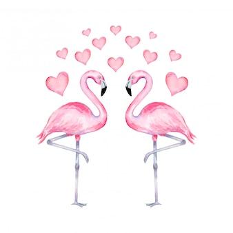 Акварельные иллюстрации реалистичные фламинго в любви с сердечками. день святого валентина фламинго.