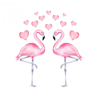 Watercolor illustration of realistic flamingo in love with hearts  . valentine's day flamingos.