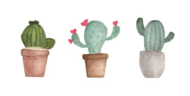 Акварельные иллюстрации набор кактусов в цветочных горшках.