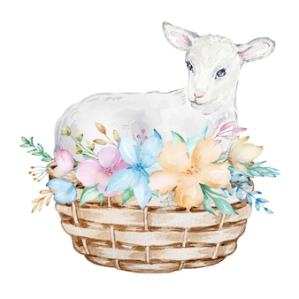 Watercolor illustration of a white lamb in a basket with flowers, easter image, portrait of a goat, delicate design element