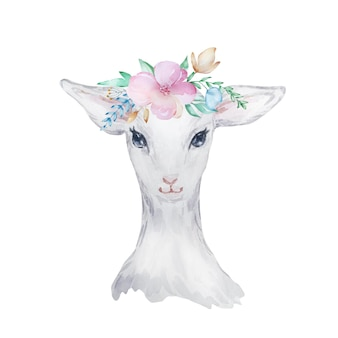 Watercolor illustration of a white lamb with flowers on his head, easter image, portrait of a goat, delicate design element