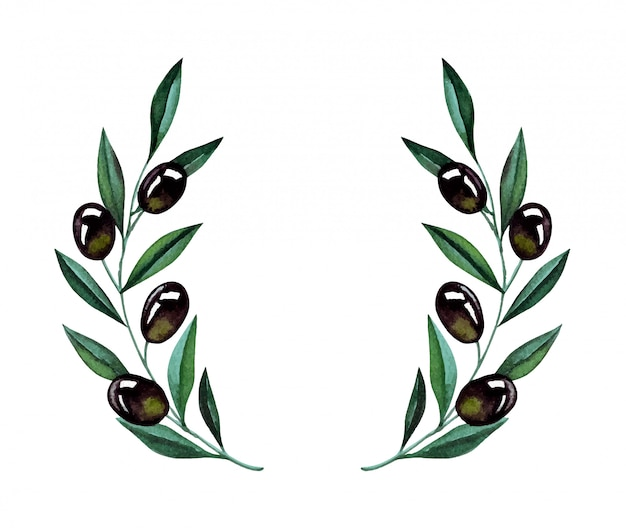 Watercolor illustration with olive branches and wreath. floral illustration for wedding stationary, greetings, wallpapers, fashion and invitations.