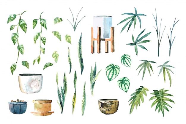 수채화 실내 식물 (pothos, 뱀 식물, peperomia, 레이디 팜 및 xanadu) 흰색 배경 일러스트 레이 션에 고립 된 세트를 정렬
