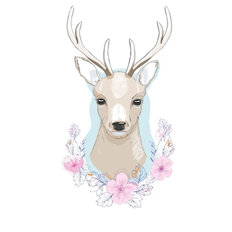 Watercolor   isolated deer