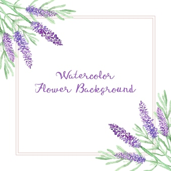 Watercolor lavender flower background