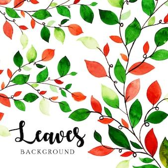 수채화 잎 배경