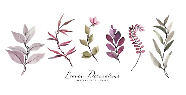 水彩の葉と花の装飾セット
