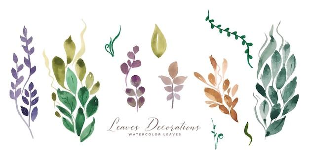 Assortimento di decorazioni di foglie dell'acquerello