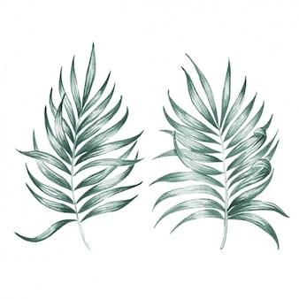 Watercolor leaves design