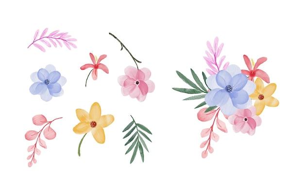 Disegno della collezione di foglie e fiori dell'acquerello
