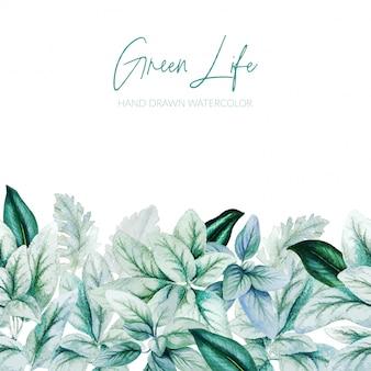 Watercolor leaves, greenery header, seamless border, hand drawn