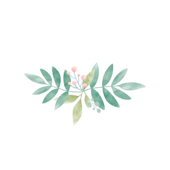 Watercolor leaves with berries vector