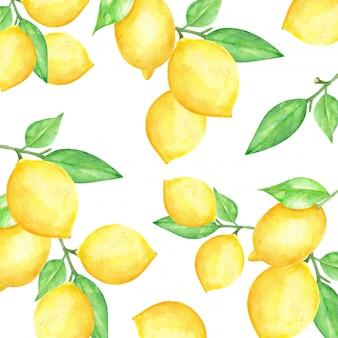 水彩レモンフルーツパターン