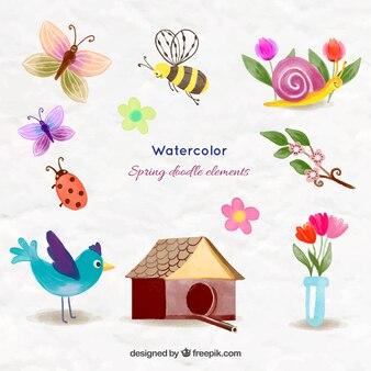 Animali belli acquerello e le cose di primavera