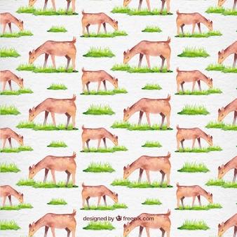 水彩美しい子鹿の放牧パターン