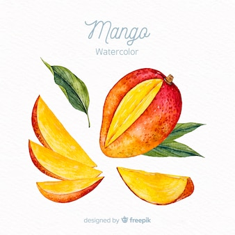 Watercolor mango background