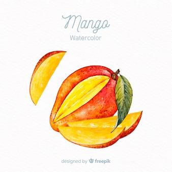 Watercolor mango background
