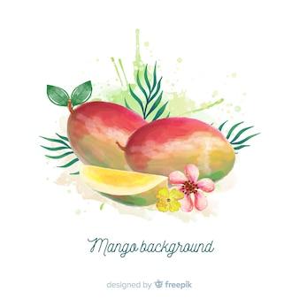 Watercolor mango illustration