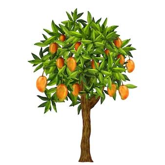 Акварельная иллюстрация дерева манго