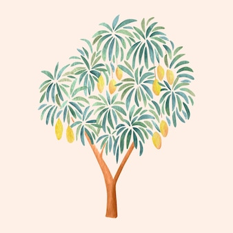 Watercolor mango tree illustration
