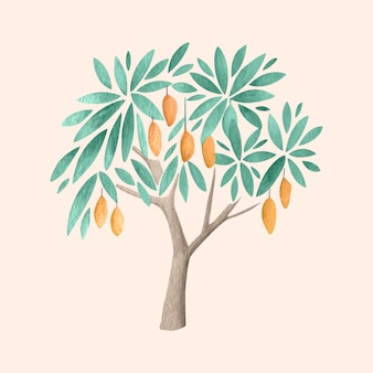 Watercolor mango tree illustration