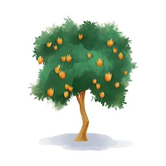 Albero di mango dell'acquerello con frutti