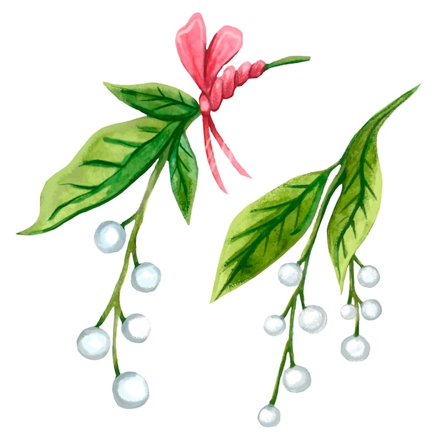 Watercolor mistletoe with a pink bow for christmas