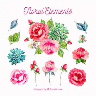 Watercolor modern floral elements