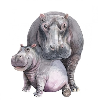 Watercolor mom and baby hippo