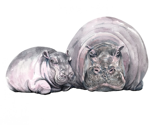 Watercolor mom and baby hippopotamus