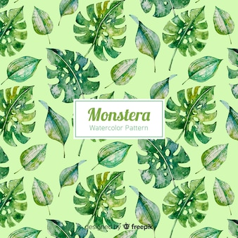 Watercolor monstera background