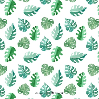 Watercolor monstera leaves background