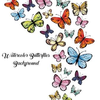 «акварельные многоцветные бабочки»