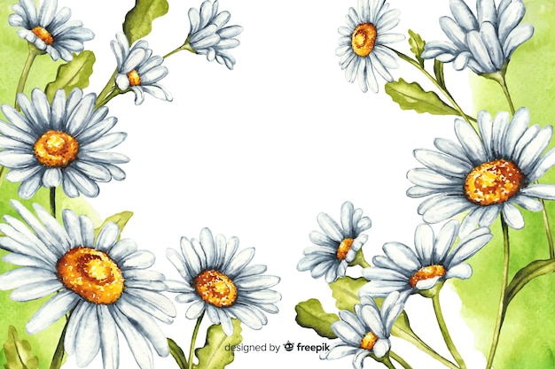Watercolor natural background with daisies