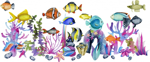 산호와 바다 돌 그림 중 수채화 해양 열대 이국적인 물고기
